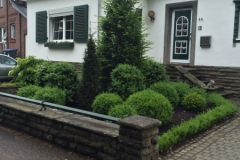 Garten_10
