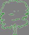Neu- und Umgestaltung von Hausgärten und Parkanlagen, Pflanz- und Saatarbeiten, Gartendenkmalpflege, Innenraumbegrünung, Dachbegrünung